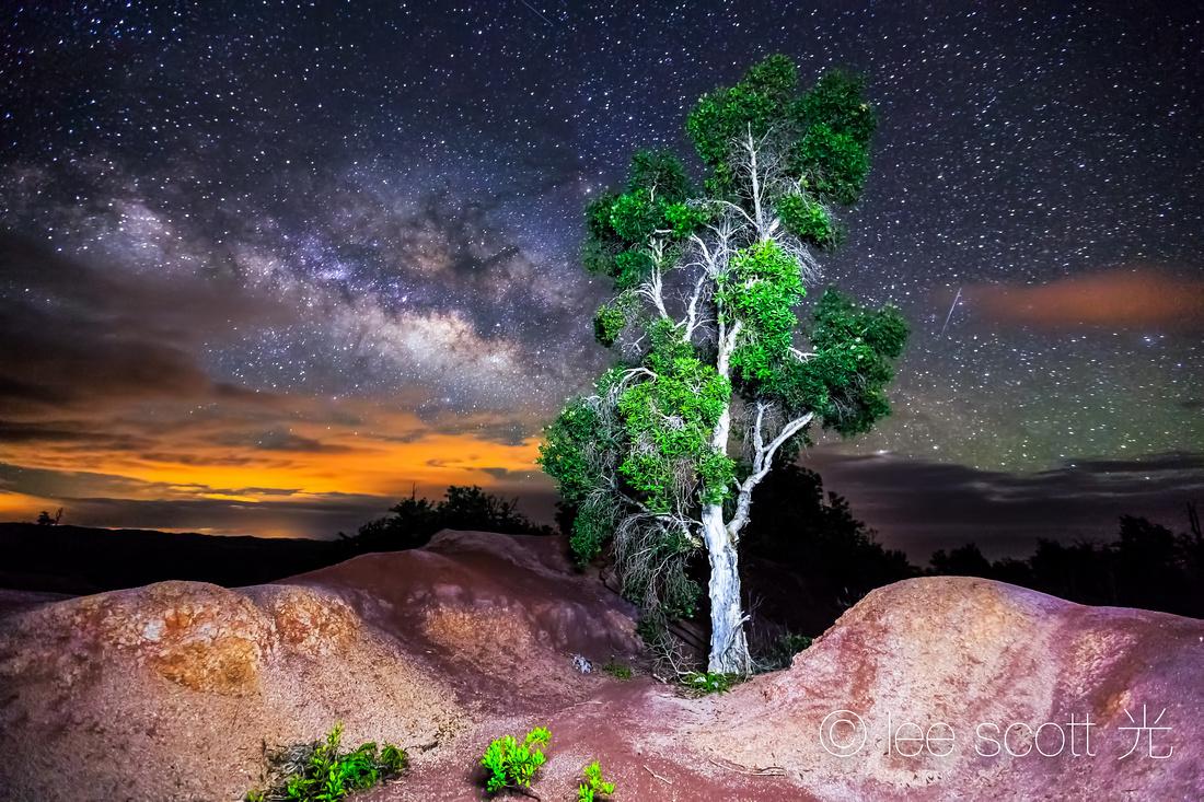 Kauai Night Sky