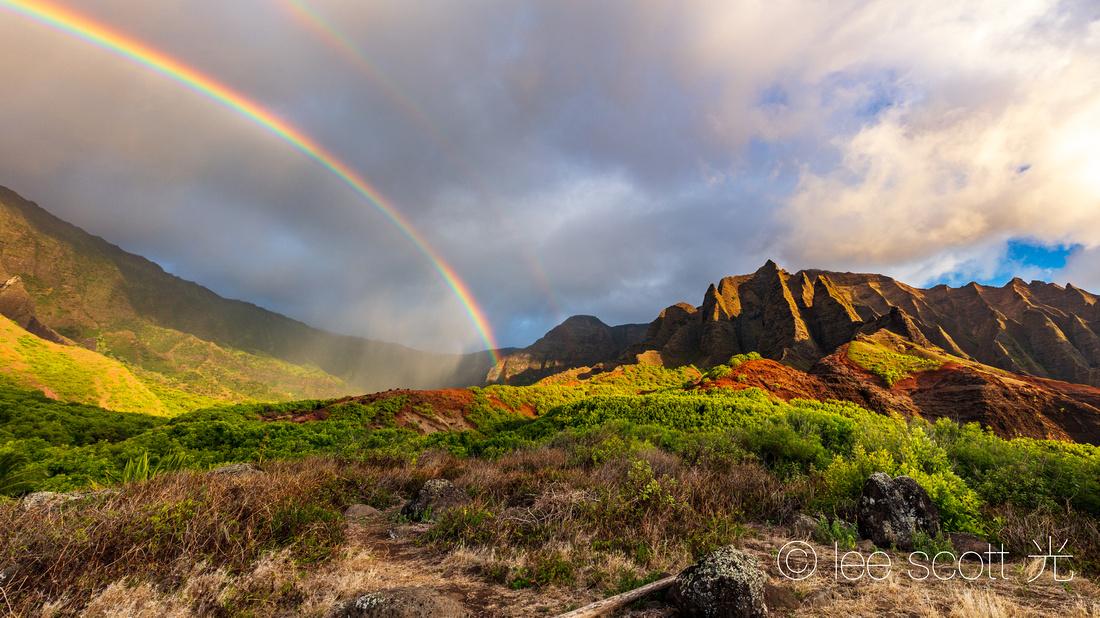 Where Rainbows Fly