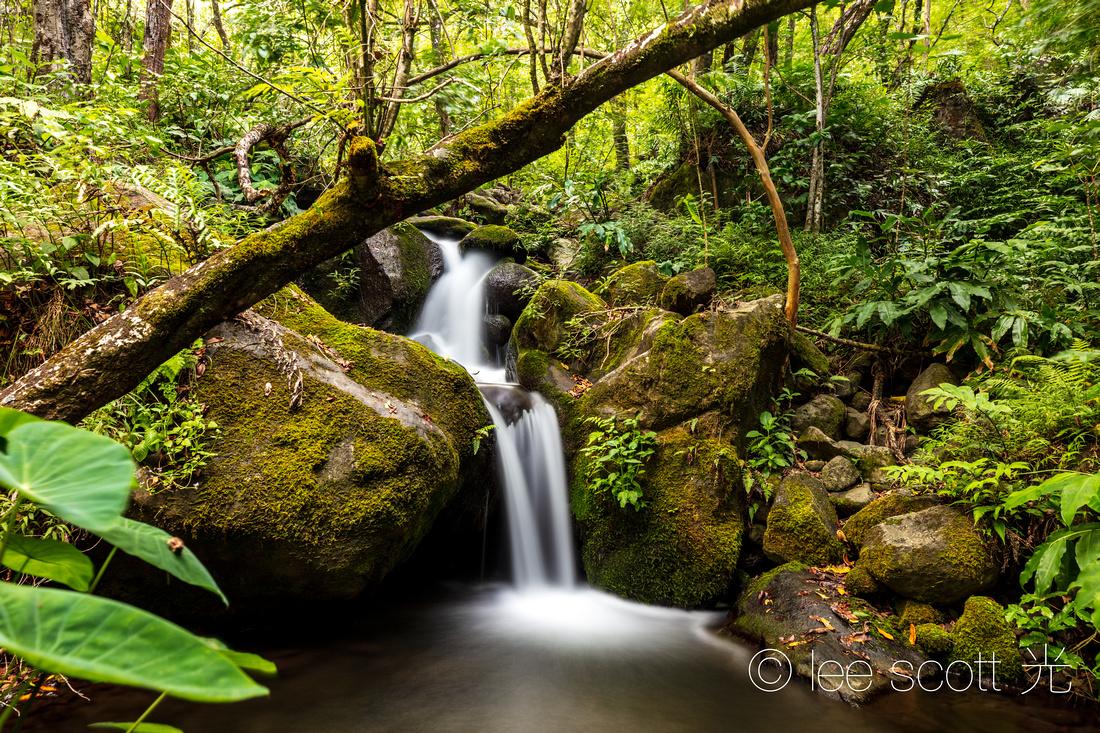 One of the Many Little Falls of Hanakoa