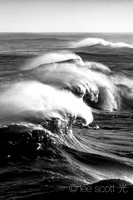 Swell (bw)